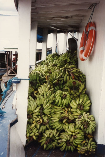 Enviar foto de Loads of bananas being transported by boat de Brazil como tarjeta postal eletrónica
