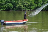 Picture of Man fishing in Brunei River - Brunei