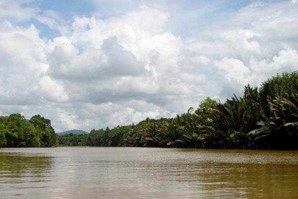 Send picture of Brunei River from Brunei as a free postcard