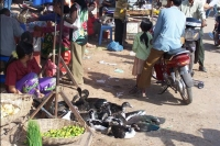 Click to enlarge picture of Shops in Cambodia
