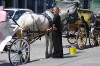 Photo de A horse drawn carriage in Montreal - Canada