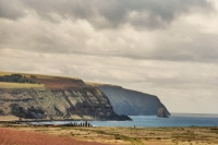Foto di Easter Island coastline with statues - Chile