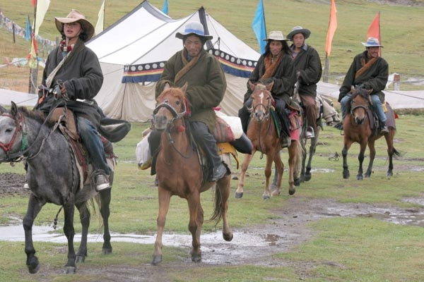 Send picture of Horses used for transportation in Sichuan Province from China as a free postcard