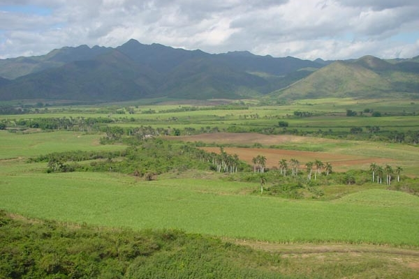 Send picture of Cuban fields from Cuba as a free postcard