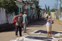 Picture of Jobs in Cuba