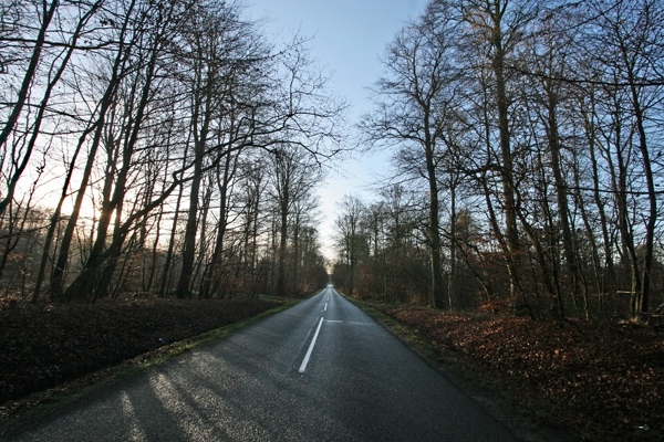 Send picture of Country road in eastern Jutland from Denmark as a free postcard