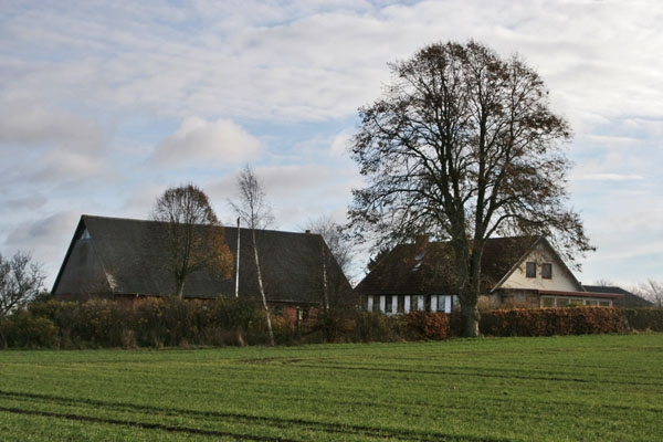 Send picture of Farm house in eastern Jutland from Denmark as a free postcard