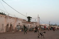 Foto van Streetlife in the coastal town Tadjoura - Djibouti