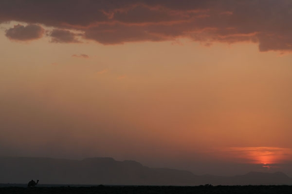  Setting sun and a camel in the desert near Dikhil
