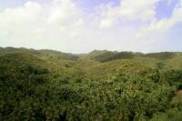Picture of Dominican Republic in North America