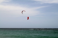 Picture of Kite surfing in Las Terrenas - Dominican Republic