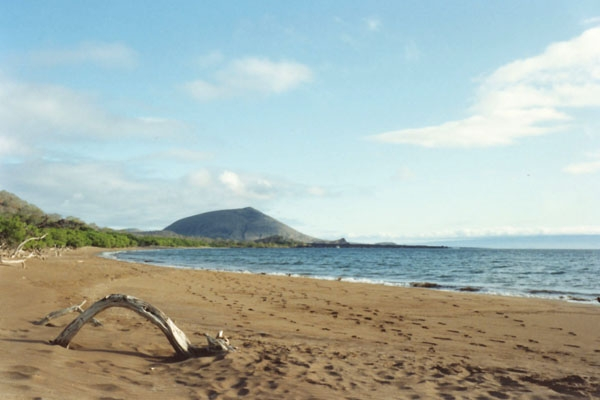 Send picture of Beach on Galápagos Island from Ecuador as a free postcard