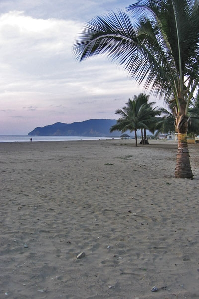 Send picture of Puerto Lopez, Manabi: Beach from Ecuador as a free postcard