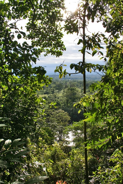 Send picture of AmaZOOnico, Tena, Napo: View from a hill from Ecuador as a free postcard