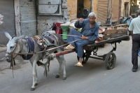 Photo de Donkey drawn carriage in Cairo - Egypt