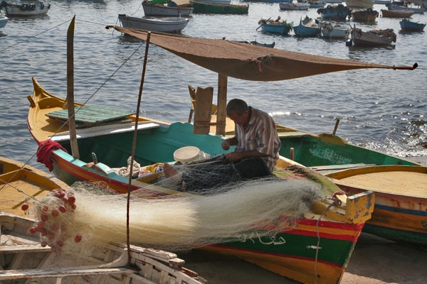 Send picture of Fisherman cleaning his net in Alexandria from Egypt as a free postcard