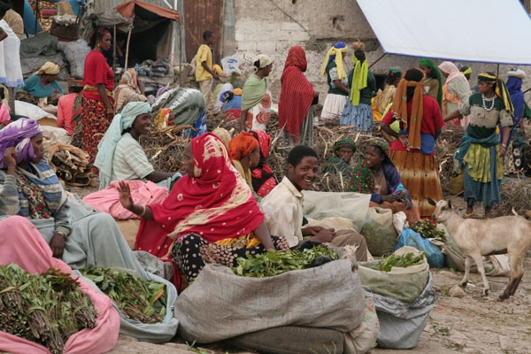 Send picture of Qat market in Harar from Ethiopia as a free postcard