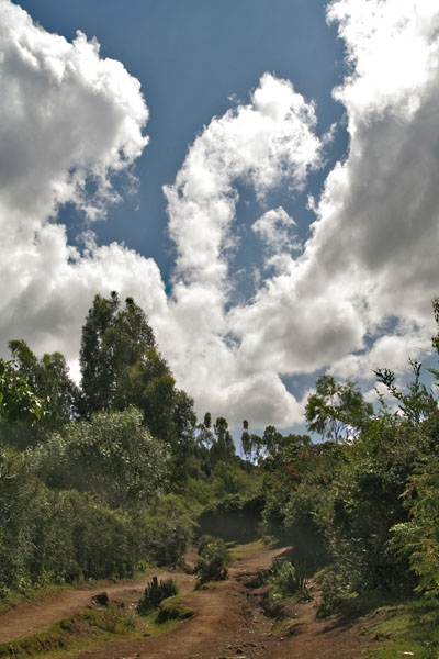 Enviar foto de Path, trees and clouds in Woldia de Etiopia como tarjeta postal eletr&oacute;nica