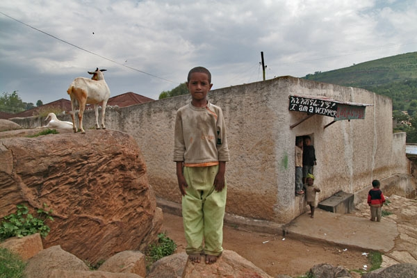 Send picture of Boy, goat and a lovely slogan from Ethiopia as a free postcard