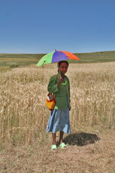 Envoyer photo de Girl with parasol in Axum de l'Ethiopie comme carte postale électronique