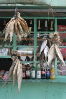 Foto van Dried fish in a Tblisi shop - Georgia