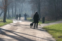 Foto van Long shadows on the paths of a park in Munich - Germany