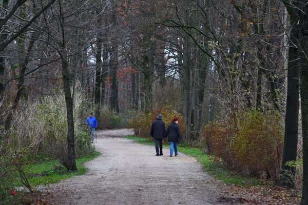 Send picture of People enjoying a beautiful fall day on the paths of a park in Munich from Germany as a free postcard