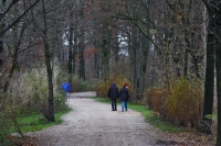 Foto van People enjoying a beautiful fall day on the paths of a park in Munich - Germany