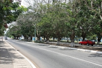 Picture of Streets in Ghana