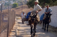 Photo de Mules used as transportation on Hydra - Greece