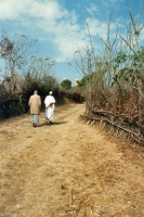Picture of Men walking on a road in Guinea - Guinea
