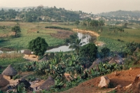 Click to enlarge picture of Houses in Guinea