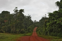 Foto di Strade in Guyana