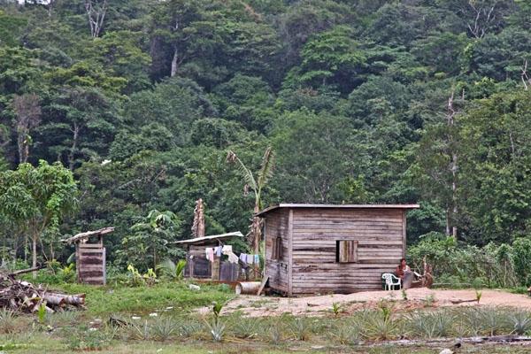 Stuur foto van Small wooden house in central Guyana van Guyana als een gratis kaart
