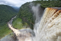 Picture of Nature in Guyana