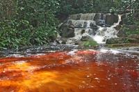 Foto de Guyana en América del Sur