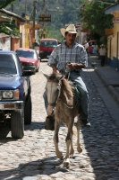 Picture of Cars and horse in Copn - Honduras