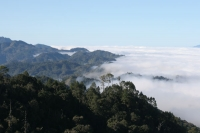 Picture of Spectacular view over Celaque Mountains - Honduras