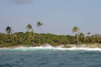 Picture of Utila Island coastline - Honduras