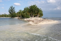 Foto di Water Key - Honduras