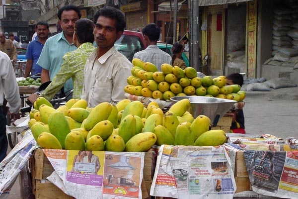 Send picture of Fruit stall in Chandni Chowk area in Delhi from India as a free postcard