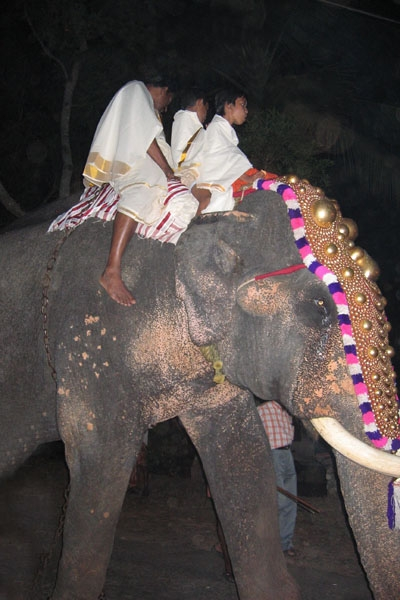Send picture of Elephant decorated for a religious Hindu festival from India as a free postcard
