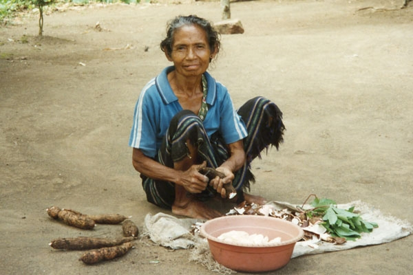 Envoyer photo de Woman preparing food in a village on Flores island de Indonésie comme carte postale électronique
