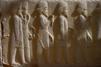 Picture of Relief at Persepolis - Iran