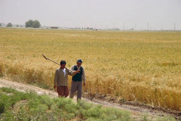 Send picture of Iranian farmers from Iran as a free postcard