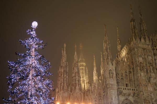 The Milan Duomo, and a christmas tree