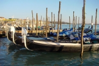 Picture of Gondola parking in Venice - Italy
