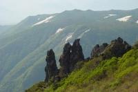 Foto de Nature - Japon