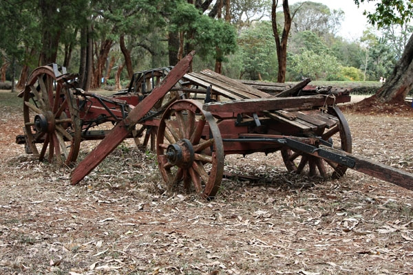 Stuur foto van Old carriage near Karen Blixen house van Kenia als een gratis kaart