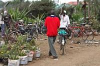 Foto di Kenya in Africa